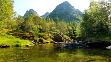 Free stock footage: Calm river flowing in a summer landscape