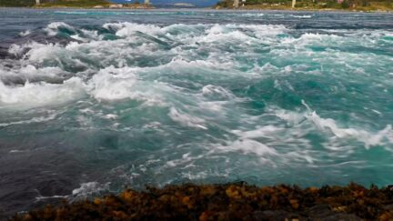 Free stock footage: Closeup look at a strong tidal current