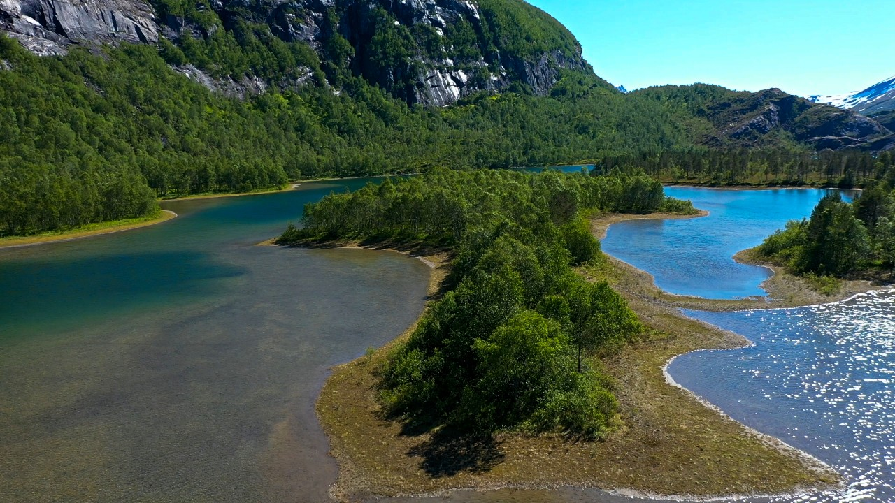 Free stock footage: Drone view of a forest in a lake