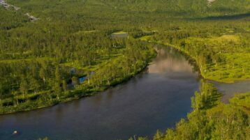 Free stock footage: Flying above a green summer forest