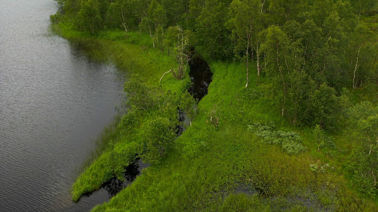Free stock footage: Flying above a small river by a lake