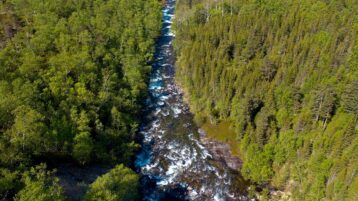 Free stock footage: Flying a long a river in the green spring forest