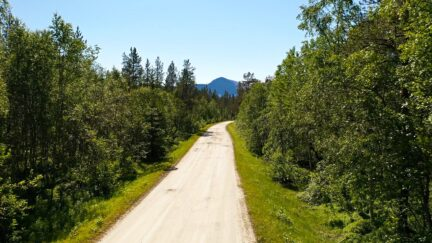 Free stock footage: Flying along a road in the forest