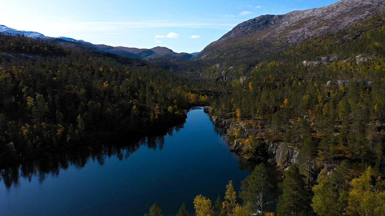 Free stock footage pack: Aerial view of autumn landscape