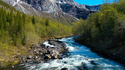 Free stock footage pack: Strong river in the spring forest