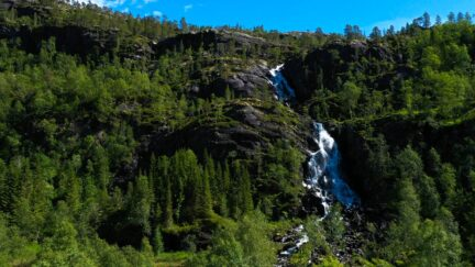 Free stock footage pack: Waterfall in the green forest