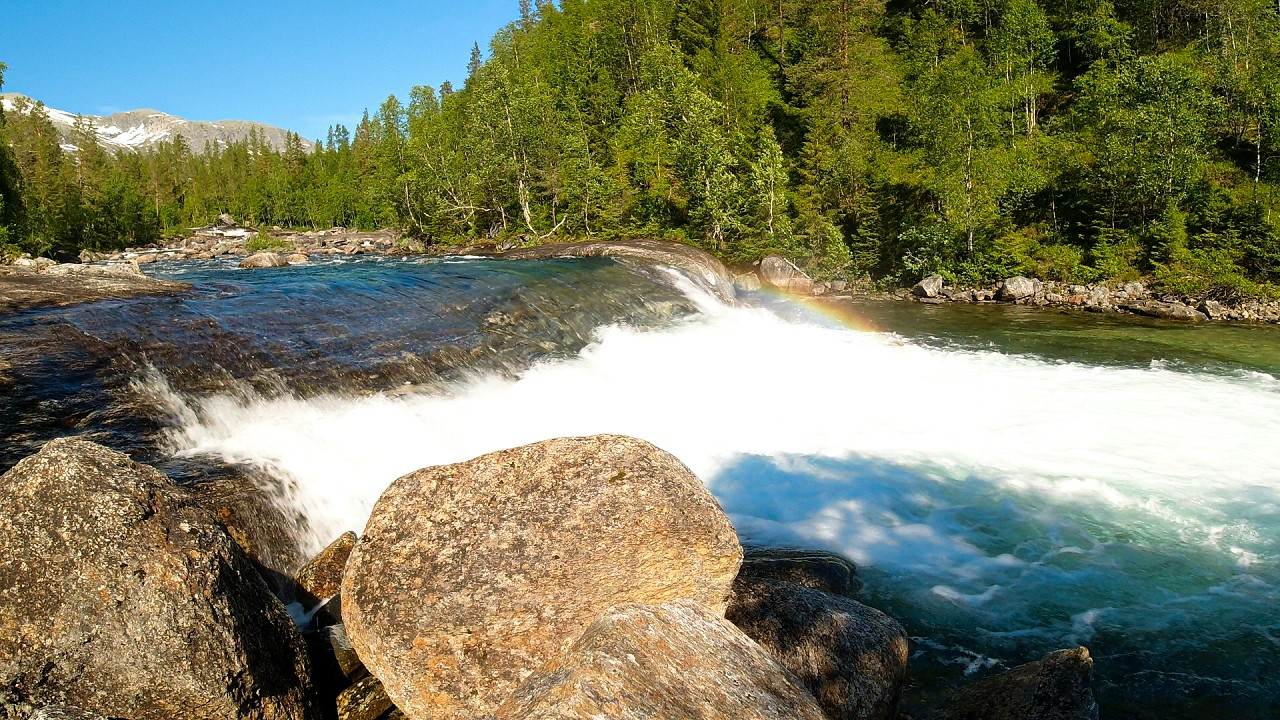 Free stock footage: River and a deep pool in the forest