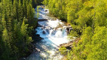 Free stock footage: River and a waterfall in the green forest