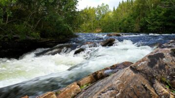 Free stock footage: River flowing in front of the camera