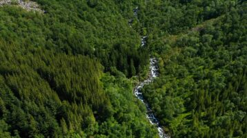 Free stock footage: River flowing through the green valley