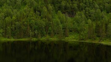 Free stock footage: Sideways aerial view of a forest by a lake