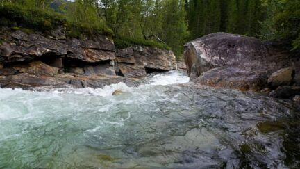 Free stock footage: Strong river in a rocky forest landscape