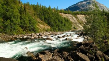 Free stock footage: Strong river on a sunny summer day