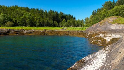 Free stock footage: Sunny summer day by the shore