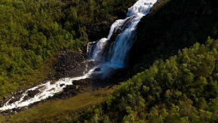 Free stock footage: Waterfall and a river in the green forest