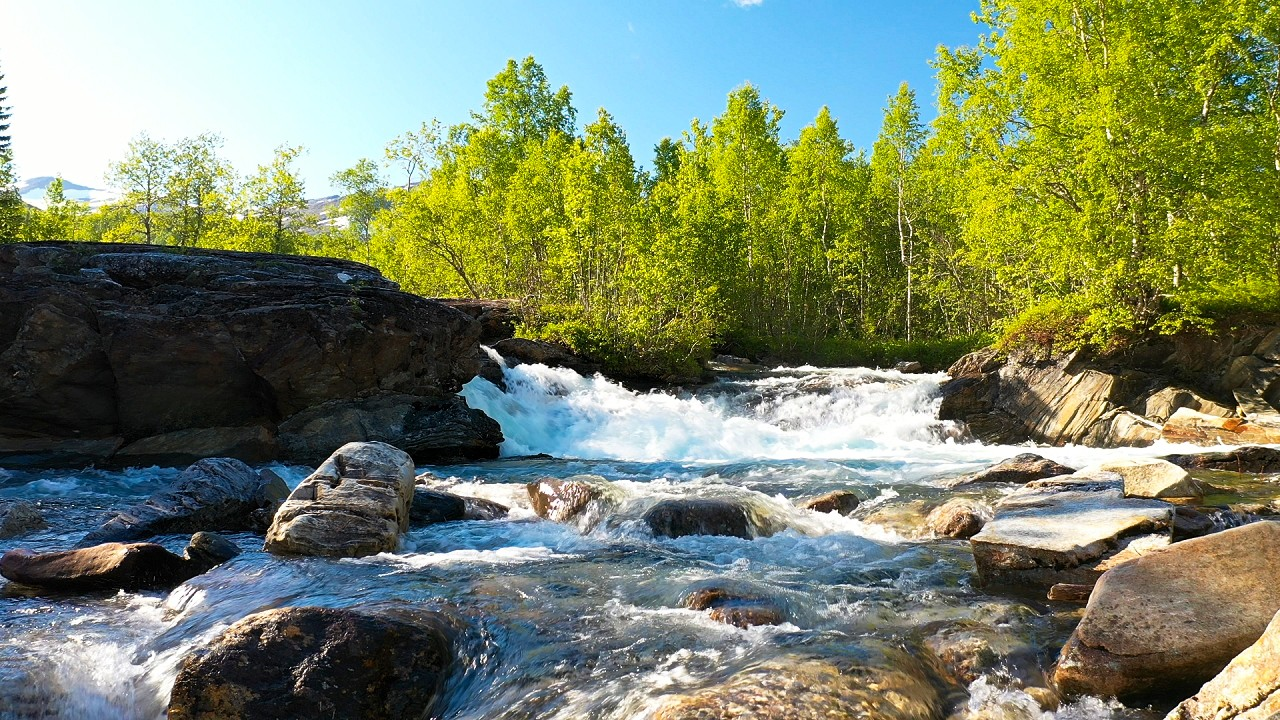 Free stock footage: Waterfall in the forest on a sunny day